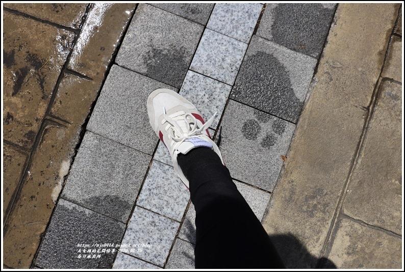 春日齊柏林樹-2020-06-03.jpg