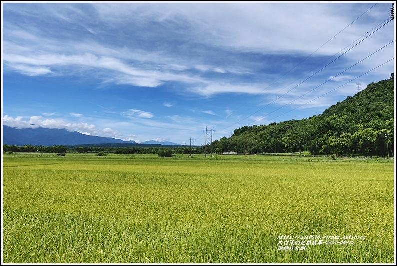 瑞穗祥北路-2021-06-01.jpg