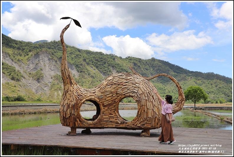 縱谷大地藝術季-鹿野后湖(貓咪種子)-2021-07-06.jpg