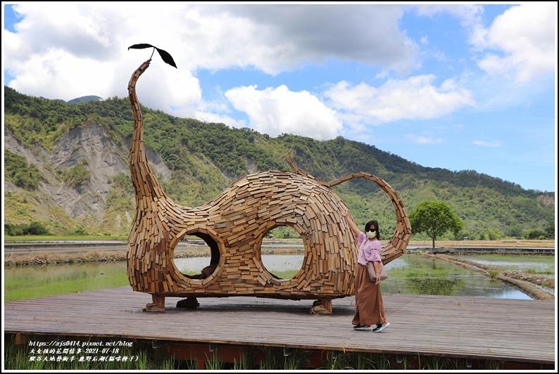 縱谷大地藝術季-鹿野后湖(貓咪種子)-2021-07-07.jpg