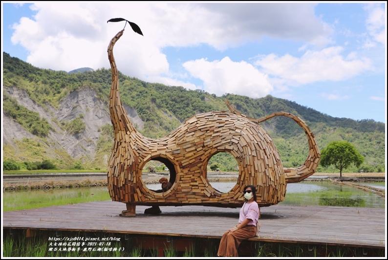 縱谷大地藝術季-鹿野后湖(貓咪種子)-2021-07-09.jpg