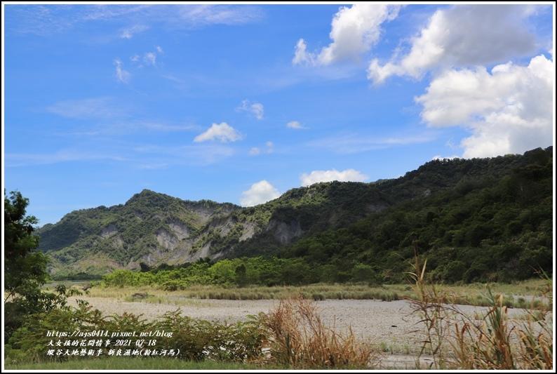 縱谷大地藝術季-新良濕地(粉紅河馬)-2021-07-01.jpg