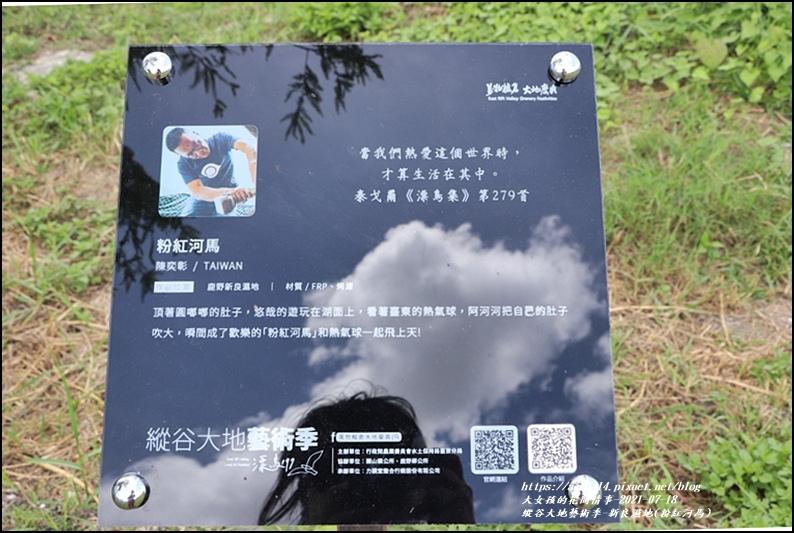 縱谷大地藝術季-新良濕地(粉紅河馬)-2021-07-05.jpg