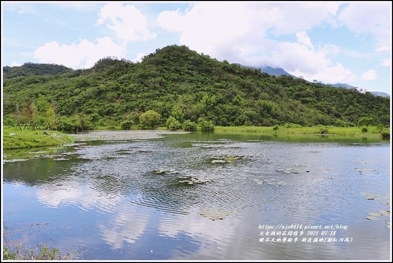 縱谷大地藝術季-新良濕地(粉紅河馬)-2021-07-16.jpg