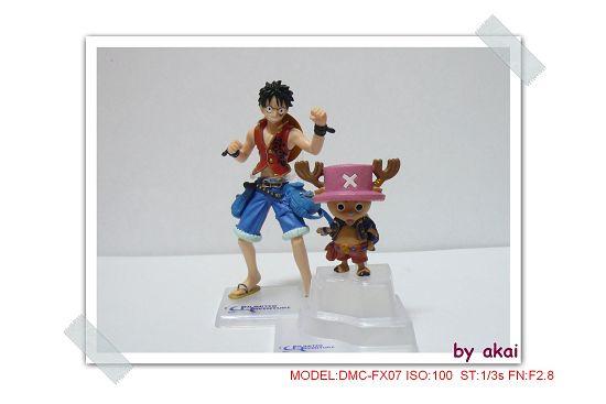 海賊10年P1010337akai(001).jp