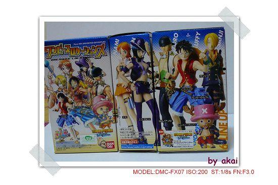 海賊10年P1010300akai(001).jp