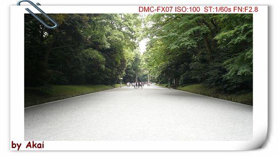 okP1020452.jpg