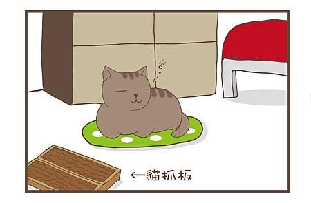 貓咪的日常3-1.jpg