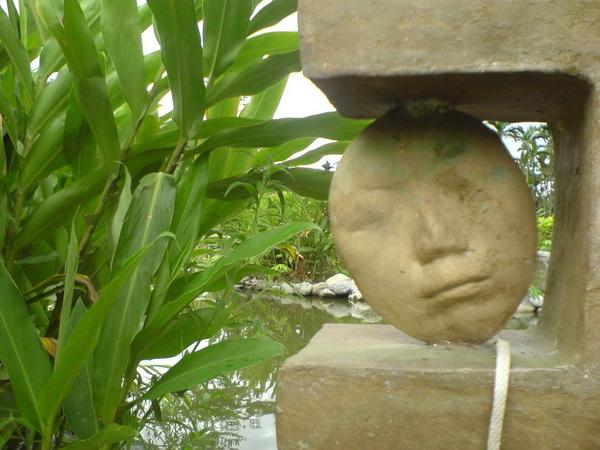 水池旁的小臉