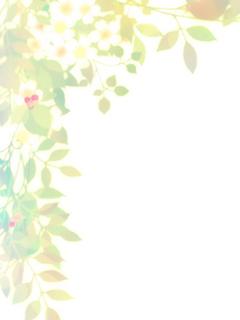 14ab3251ddab3c.jpg