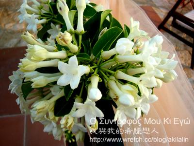 希臘傳統婚禮的純白五瓣小花στεφανωτή(stefanoti)