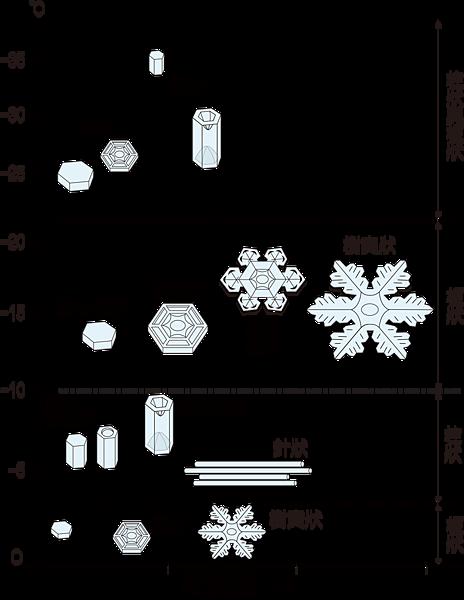 不同溫度與飽和度之下的冰晶形態