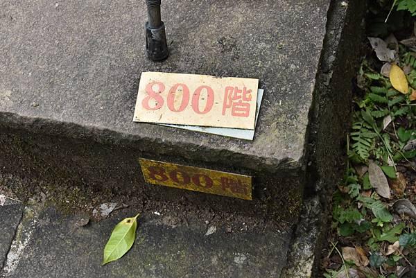 DSC_8061