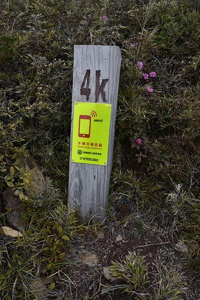 AKI_6451.JPG