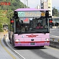 251路(區間車)  838-FX