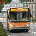 262路全程車(大有)  301-FN