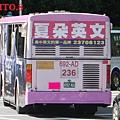 欣欣客運  2006年份三菱車車尾特寫.JPG