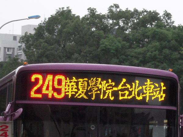 249大頭.jpg