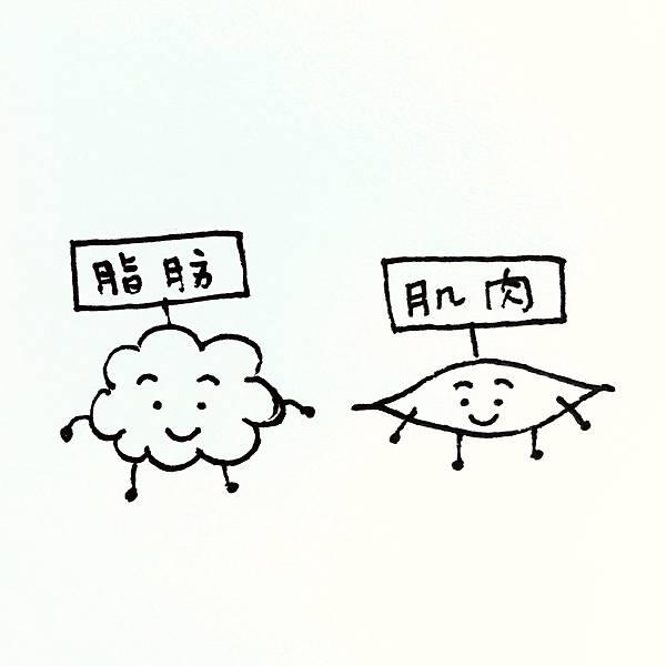 S__13574150.jpg
