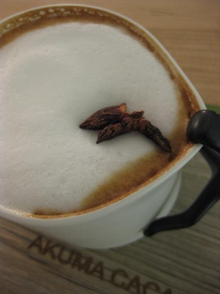 微醺咖啡-茴香