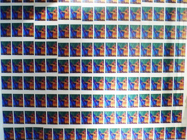 曼萍將印壞的明信片全貼在caca的牆壁上!