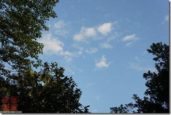 DSC01544_藍天