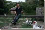 IMG_3844_龍潭附近養了一堆鴨子