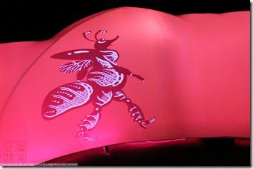IMG_9302_化為蝴蝶