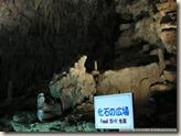 CIMG2819_化石廣場有動物化石遺跡