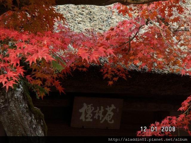 120137嵐山常寂光寺 (05).JPG