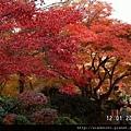 120151嵐山常寂光寺 (44).JPG