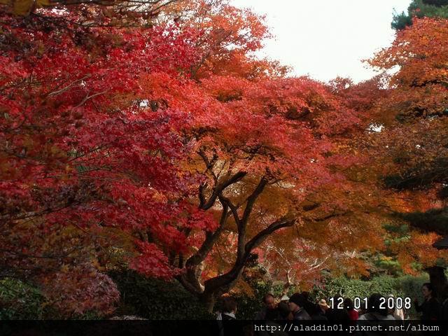 120152嵐山常寂光寺 (37).JPG