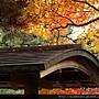 120155嵐山常寂光寺 (46).JPG
