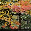 120164嵐山天龍寺 (24).JPG