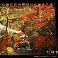 120228醍醐寺 (15).JPG