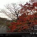 120248南禪寺 (36).JPG