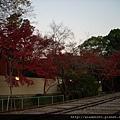 120249傾斜鐵道04.JPG