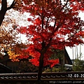 120312真如堂 (22).JPG