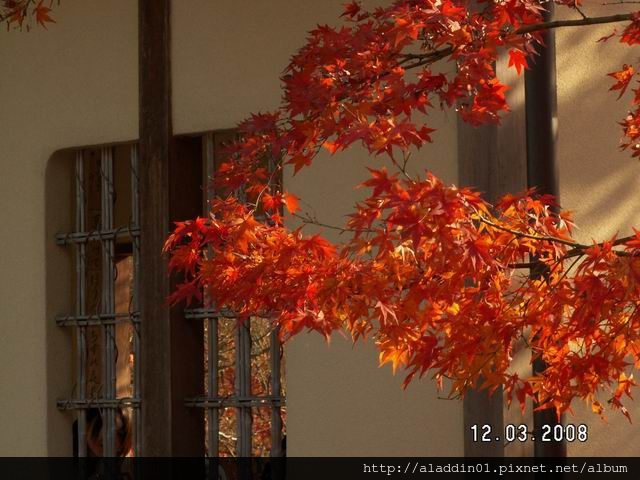 120337永觀堂 (49).JPG