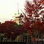 120347高台寺 (02).JPG
