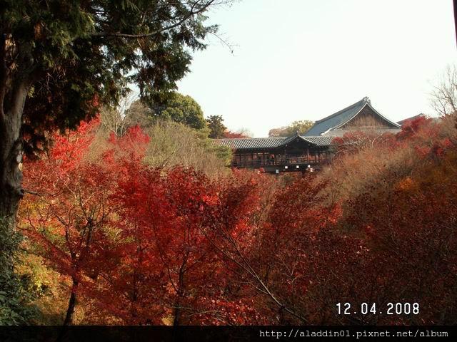 120433東福寺.JPG