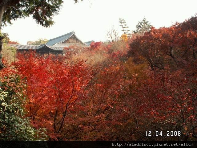 120434東福寺 (01).JPG