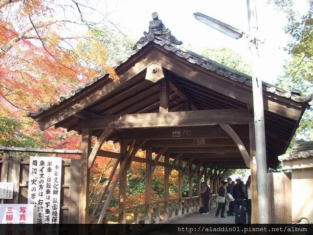 120438東福寺09.JPG