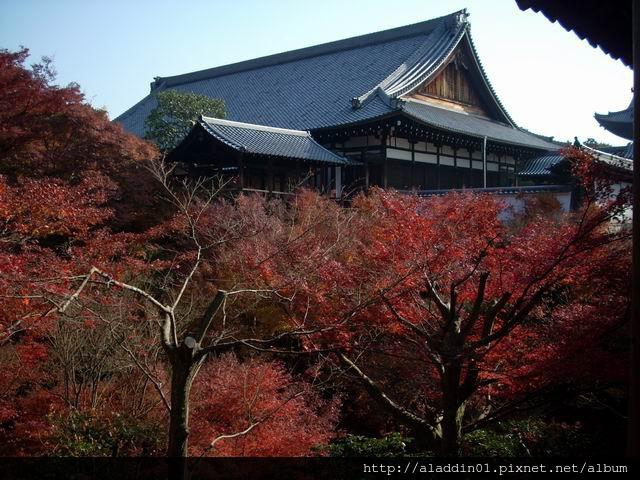 120454東福寺54.JPG