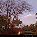 120469京都御所05.jpg