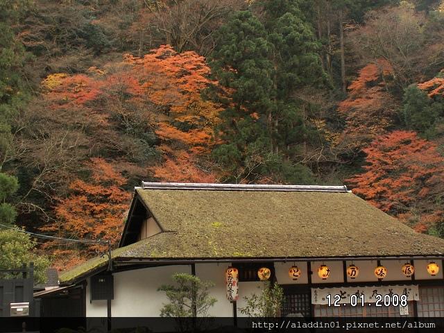 1201高山寺