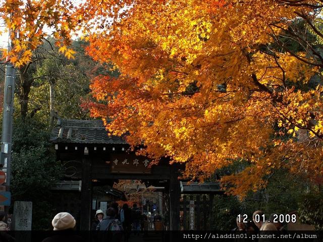 1201嵐山常寂光寺 (14)