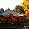 1202醍醐寺 (29)