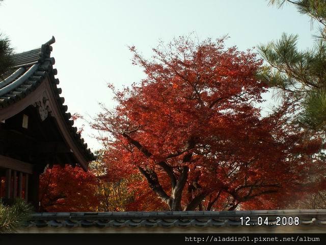 1204東福寺 (15)