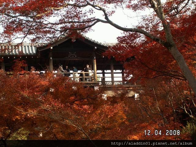 1204東福寺 (36)